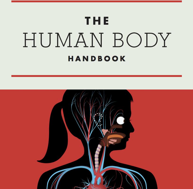 humanbody6