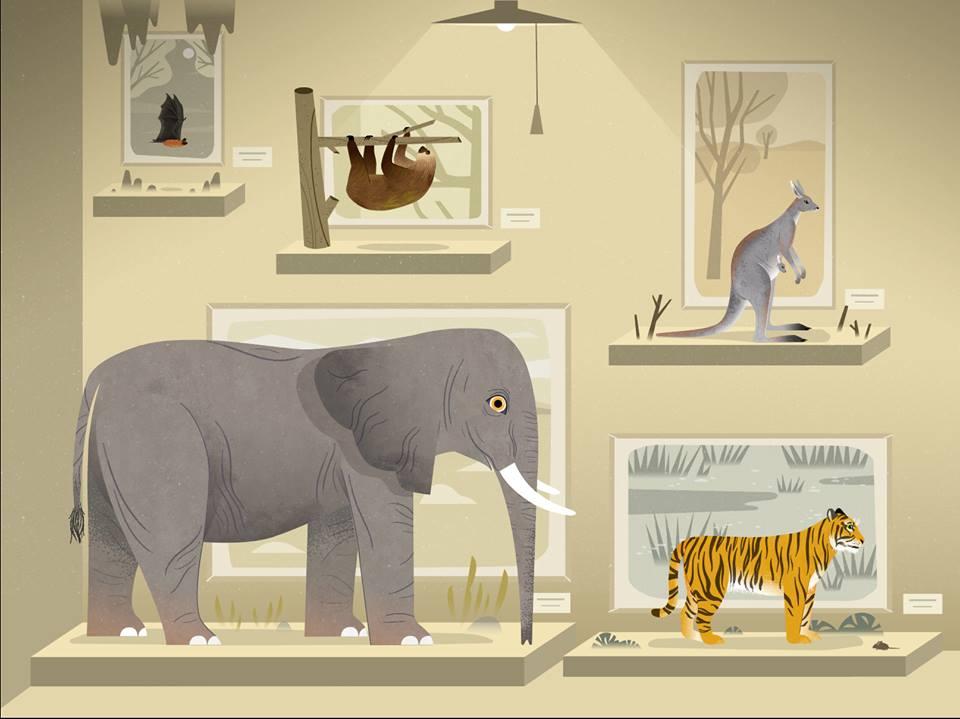 banner Mammals